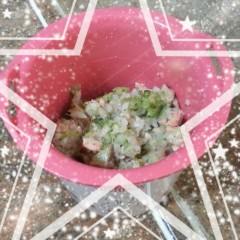 白汁西蘭花菇菇三文魚飯